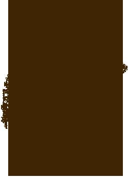 divorce attorney arizona